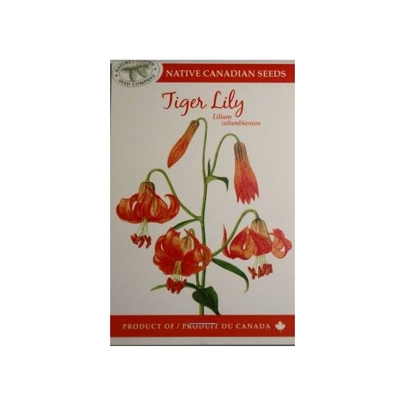 Tiger Lily Seed